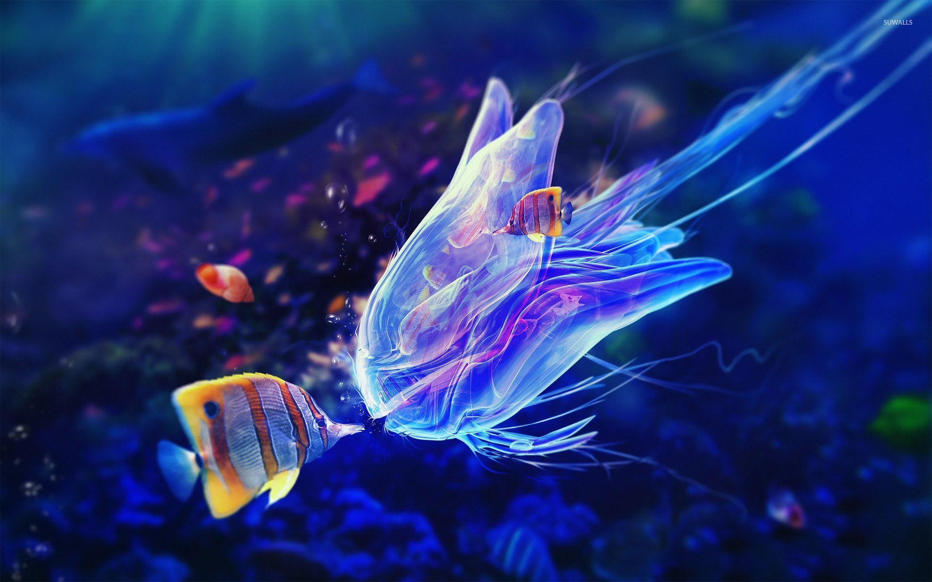 Butterflyfish And Jellyfish 20756 1920×1200 Wallpaper