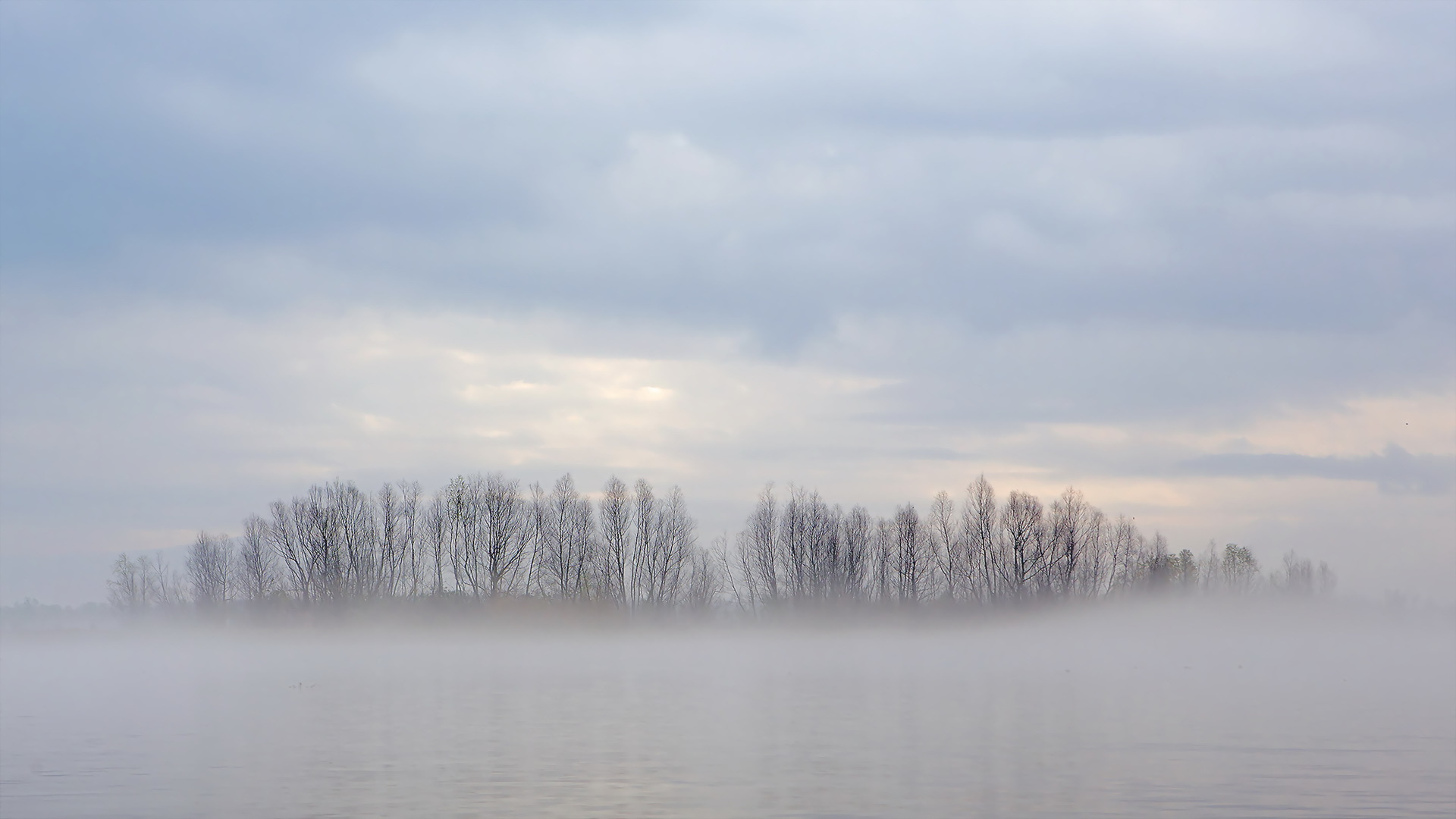 Download Fog Over Lake View Wallpaper