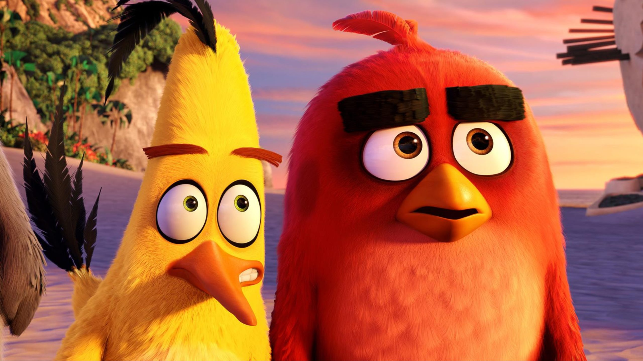 784884 byte size of Red And Chuck Angry Birds.jpg