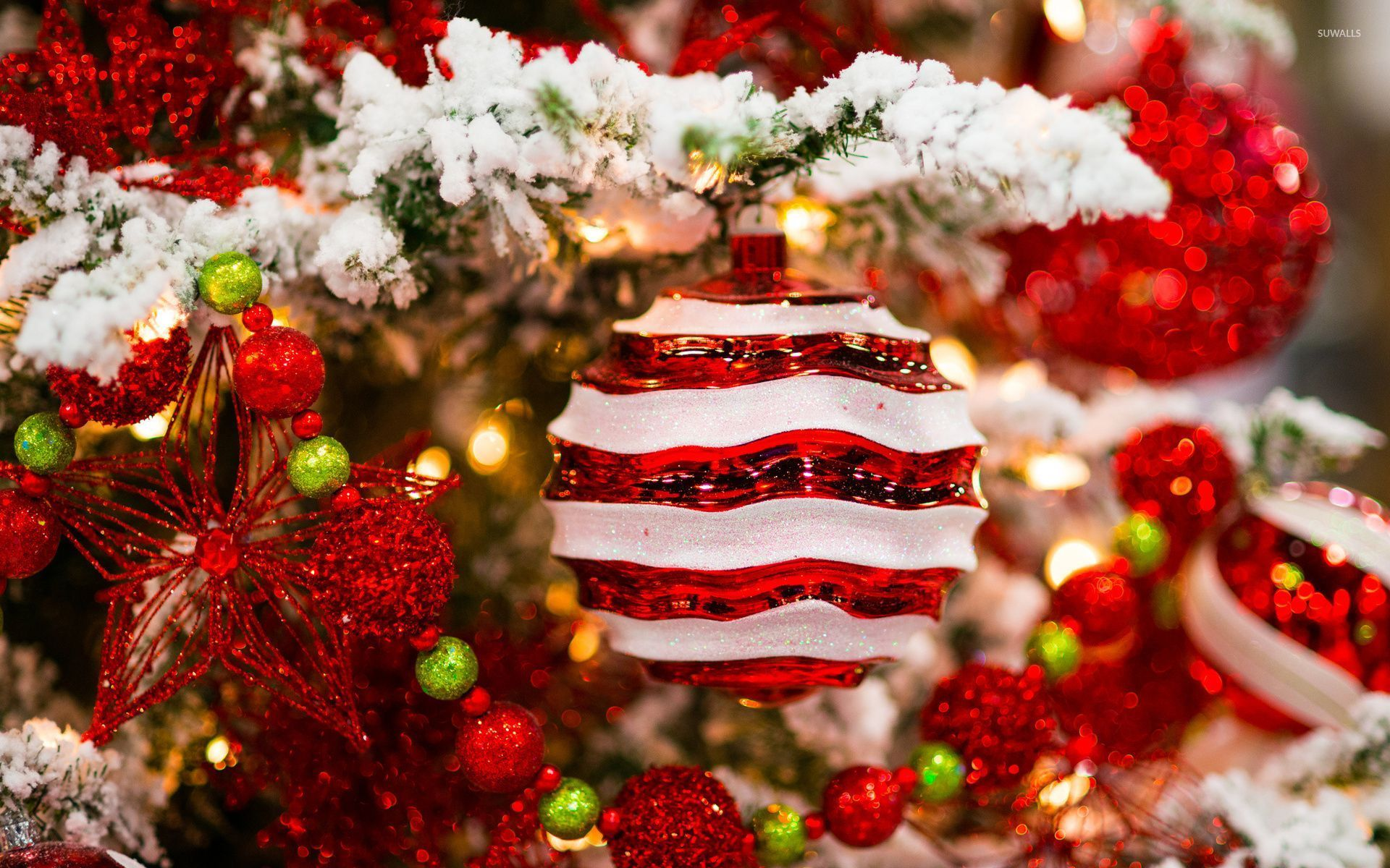 Red And White Decorations In The Snowy Christmas Tree 52001 1920×1200 Wallpaper