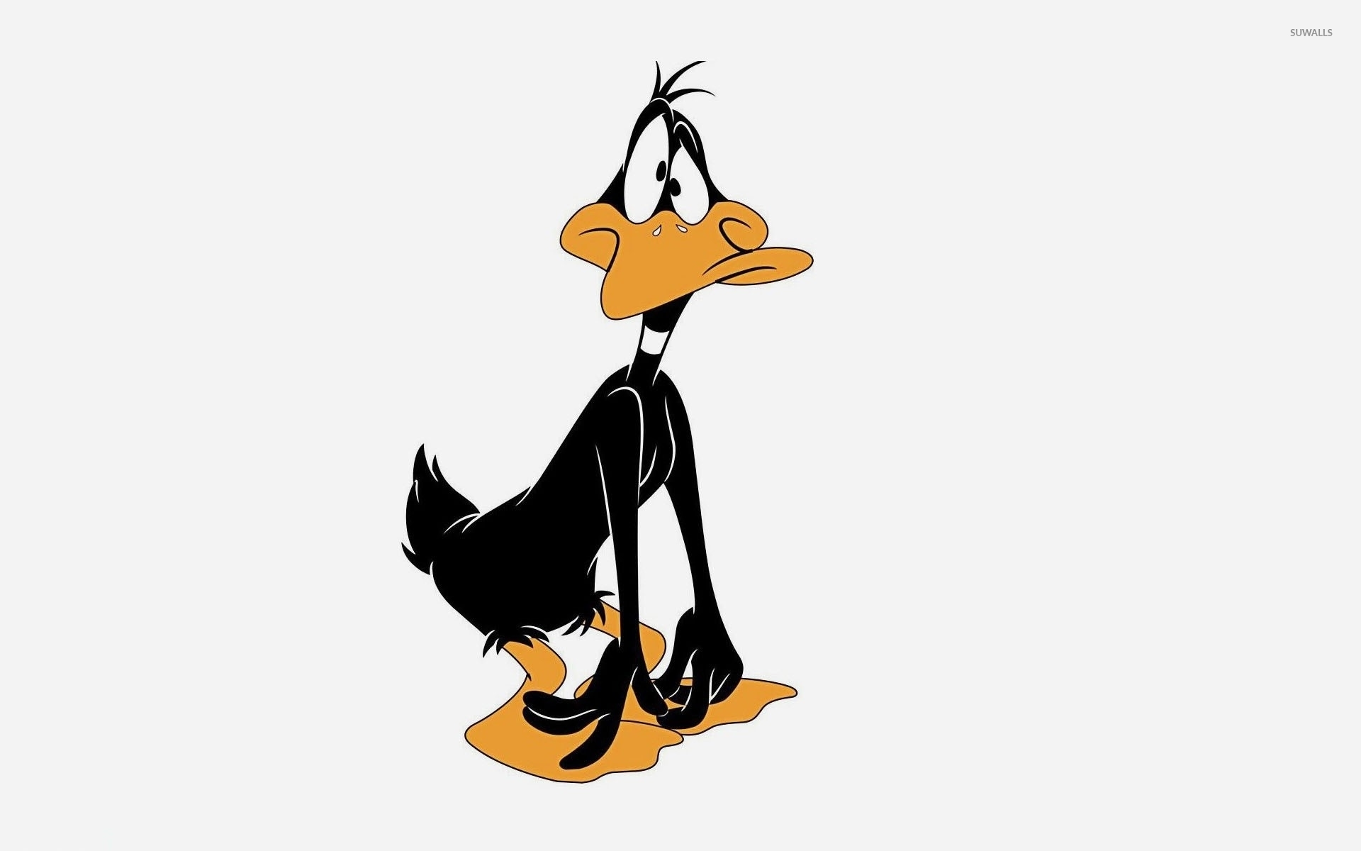 Sad And Surprised Daffy Duck 48621 1920×1200 Wallpaper