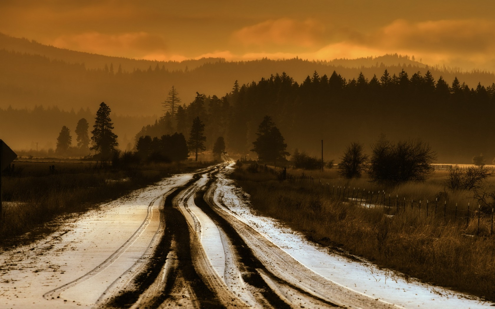 Download Snow Forest Road Wallpaper