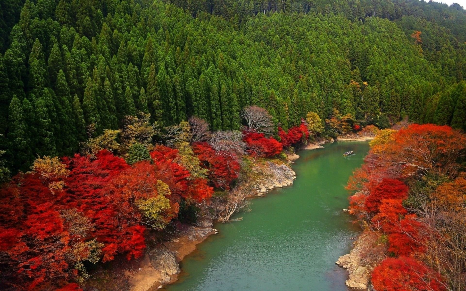 Download Autumn River Forest Wallpaper