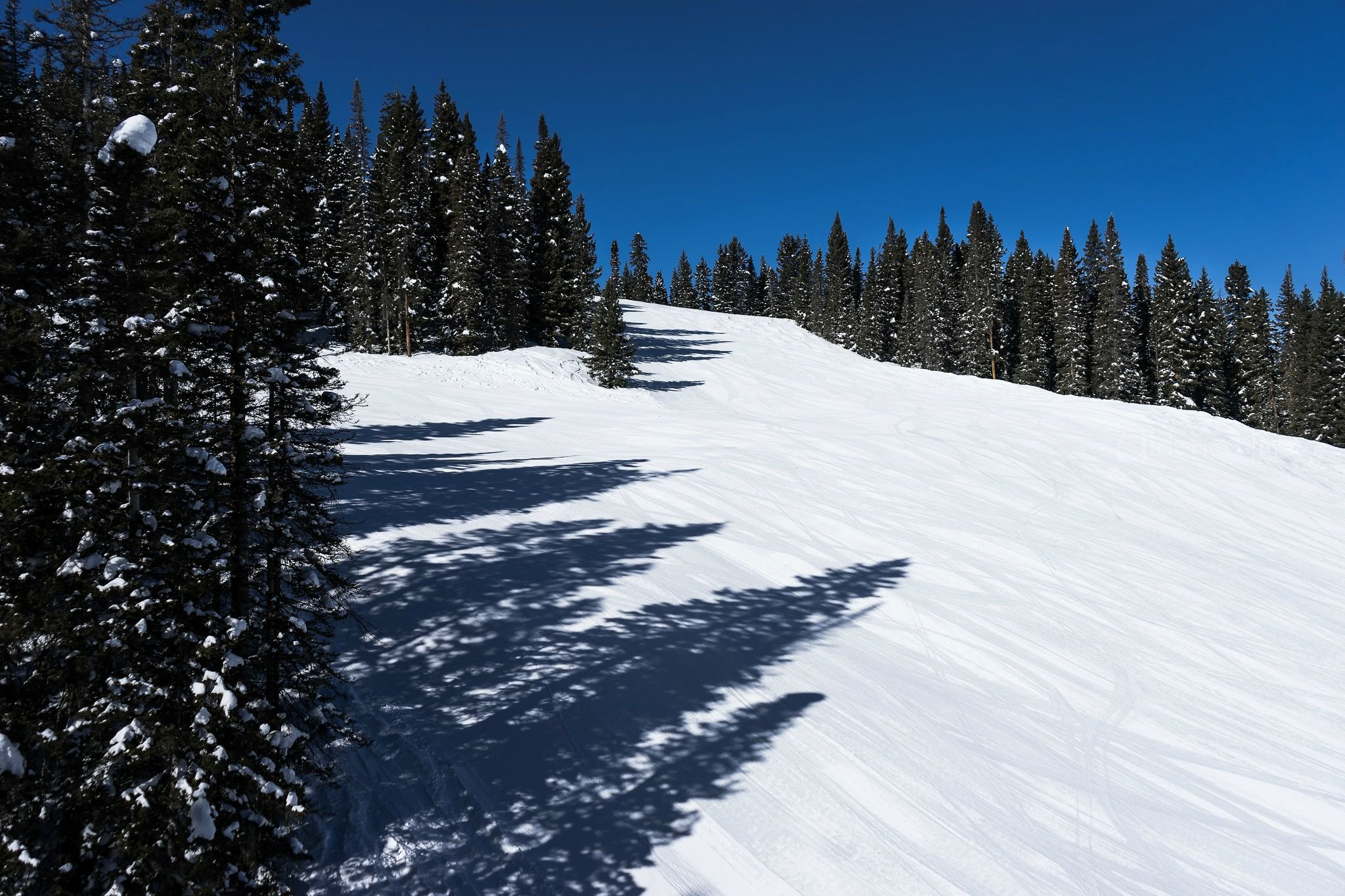 Download Clear Winter Day In Colorado Wallpaper