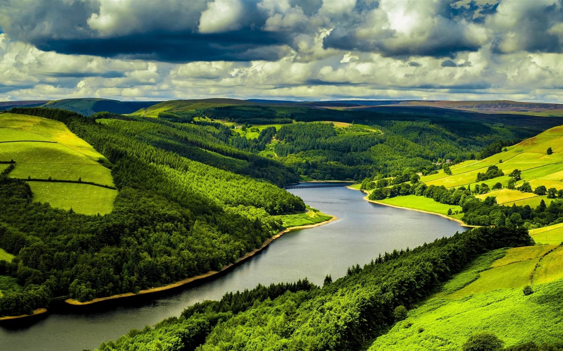 Download Green Nature River Forest