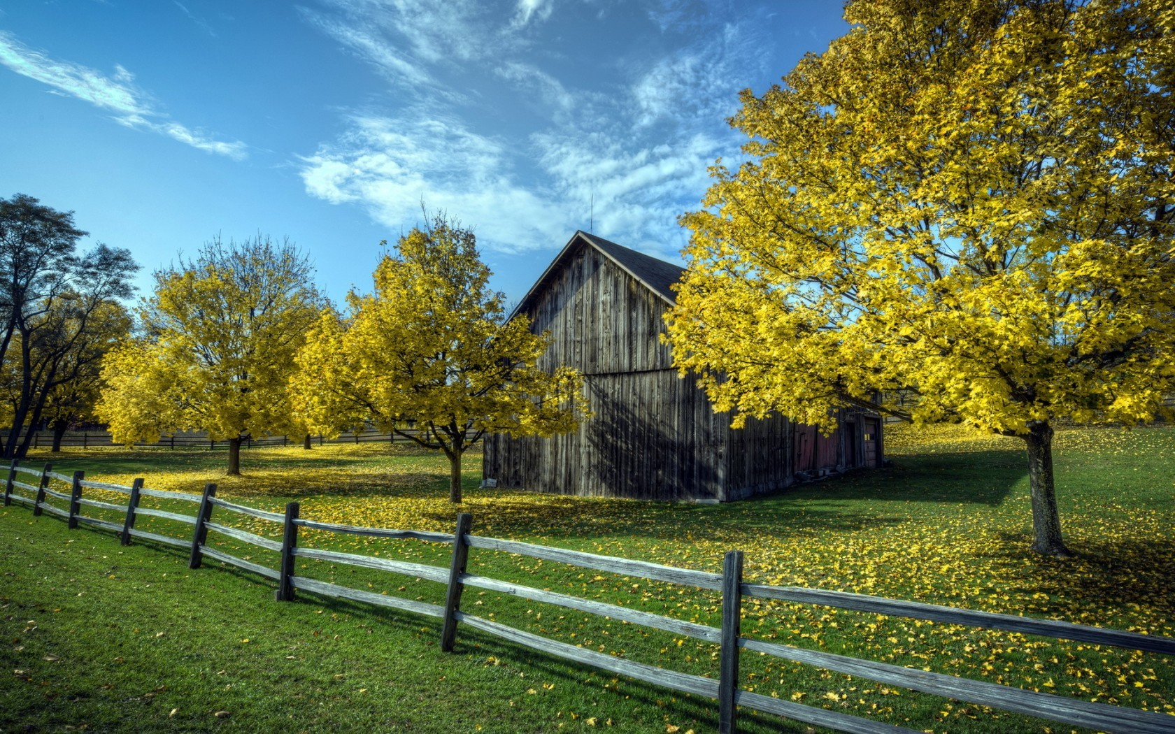 Download Lonely House With Autumn Trees
