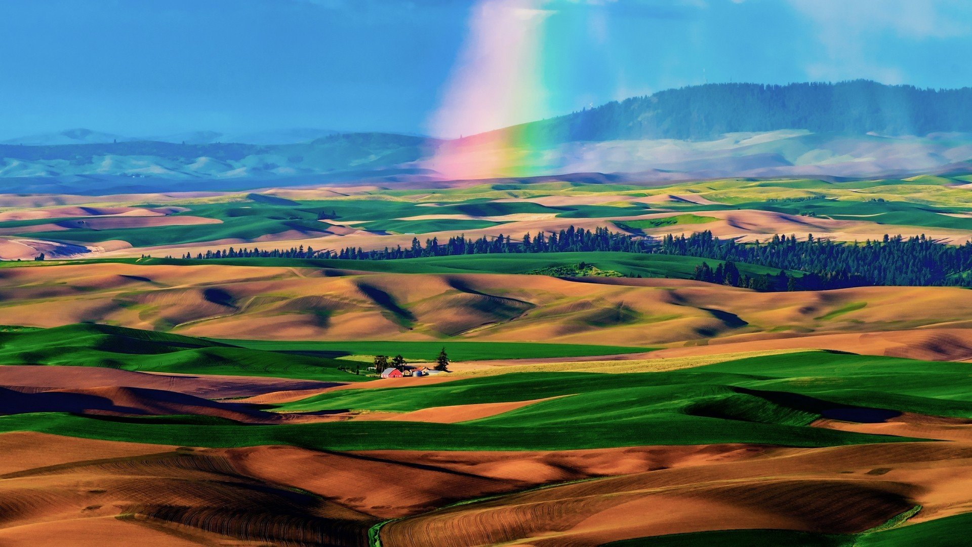 Download Rainbow On The Colorful Fields