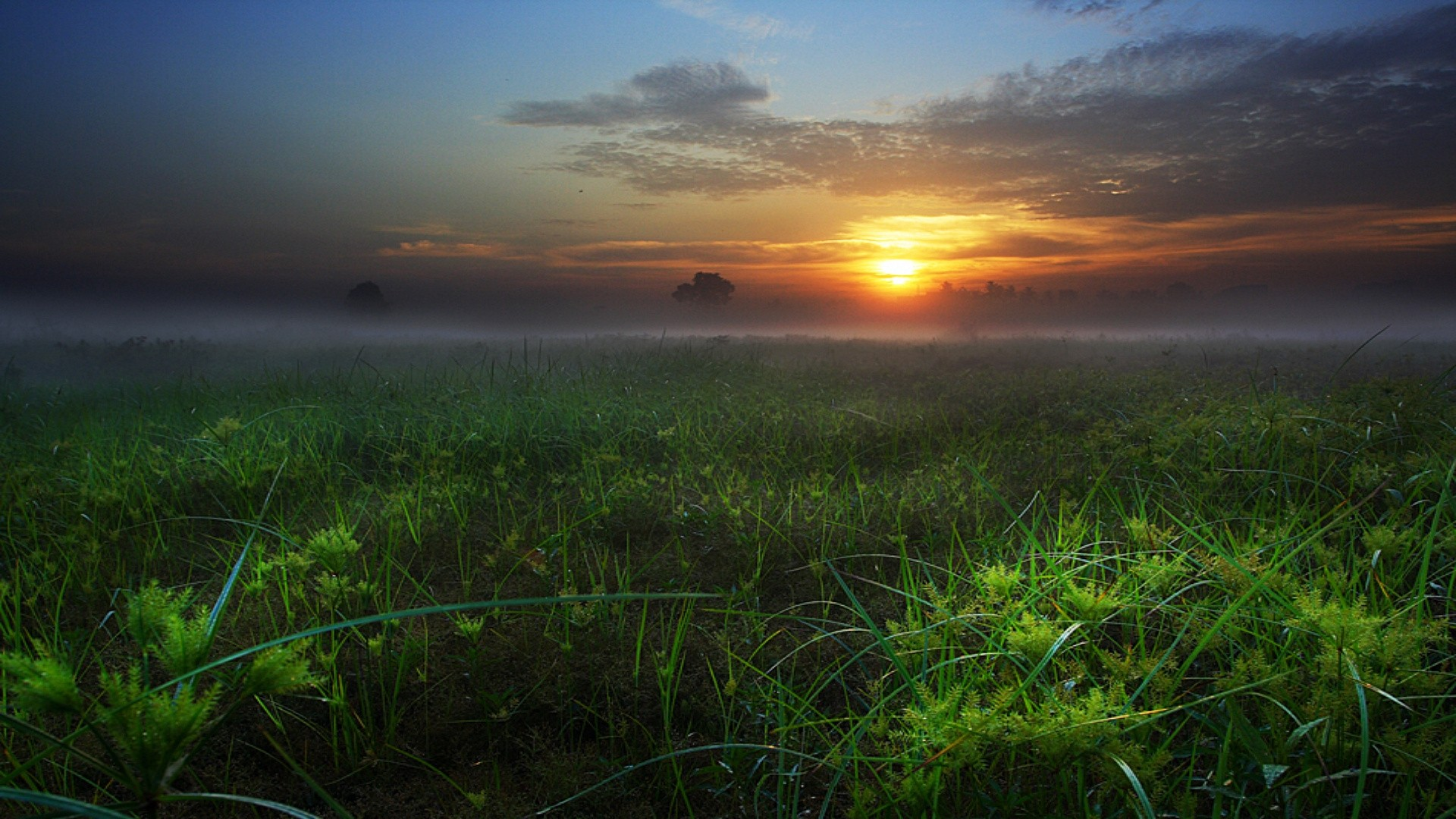 Download Sunset Landscapes Nature Fields Skyscapes 1920x1080 Hd