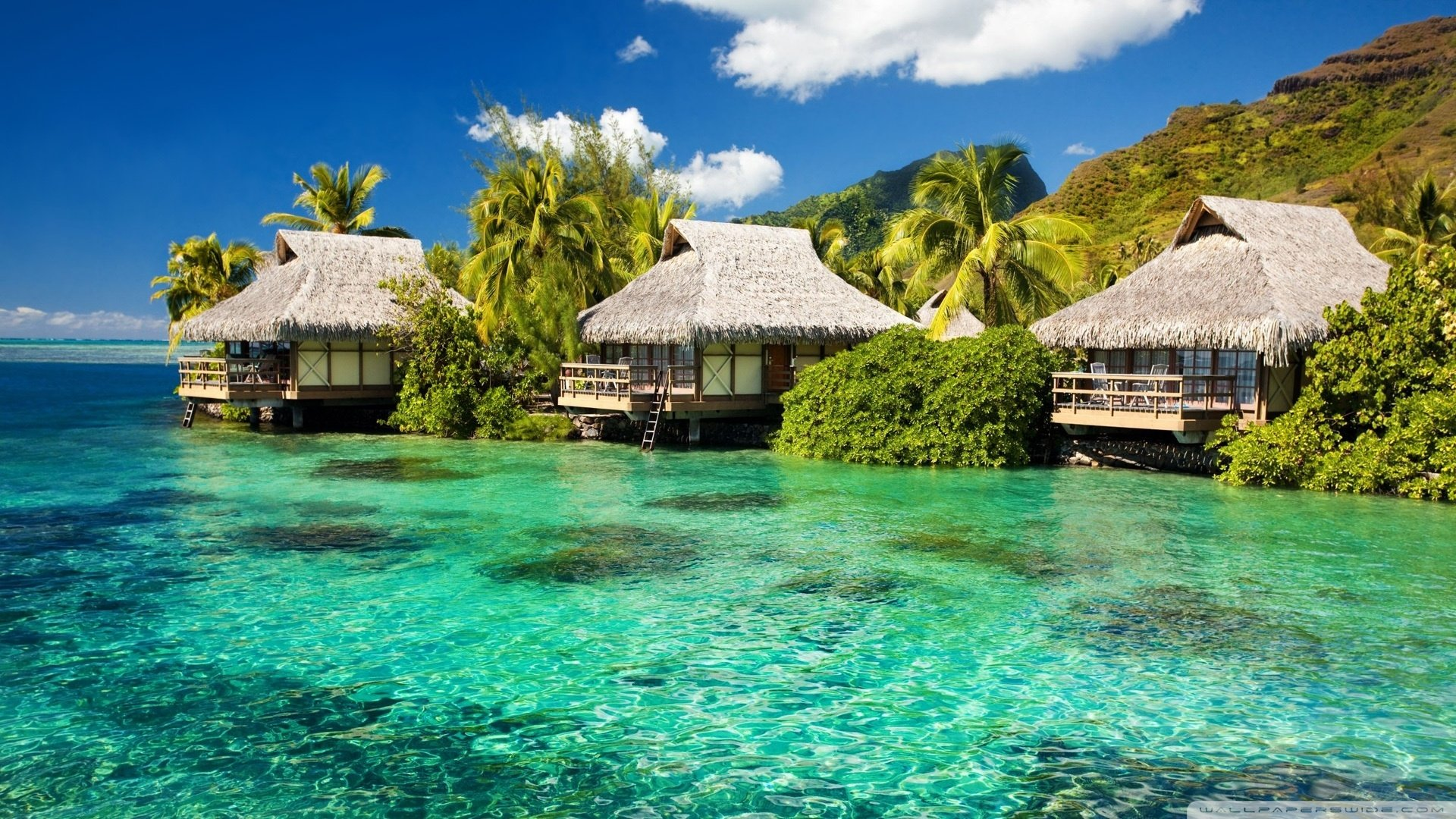 Download Water Bungalows On A Tropical Island Wallpaper